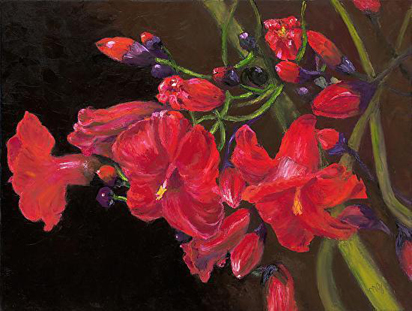 Bloomin' Red, oil painting by Maria Gibbs