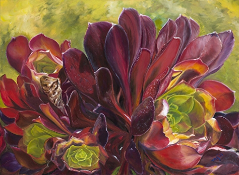 Hens and Chicks, oil painting by Maria Gibbs