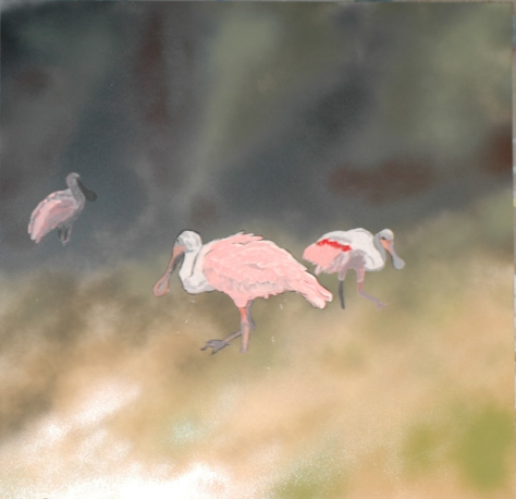 Spoonbills, J.R. Smith
