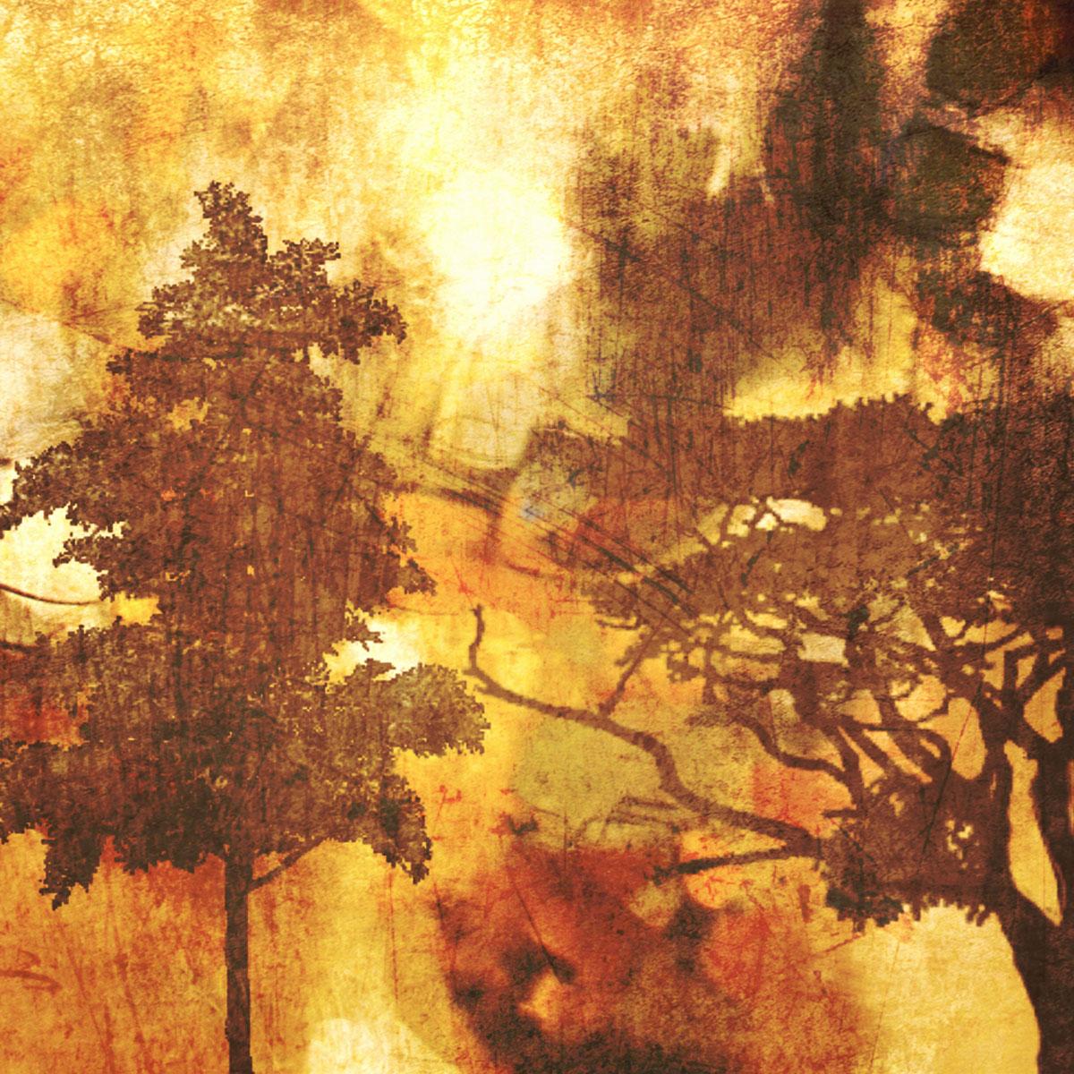 Autumn Mist II, Irena Orlov
