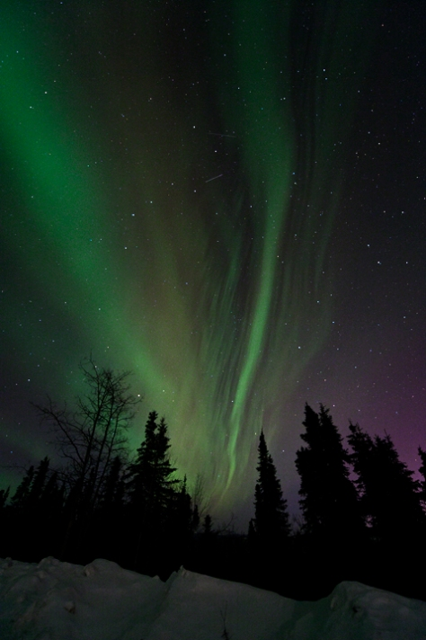 Northern Lights 10, Eileen Counihan (click photo to view more)