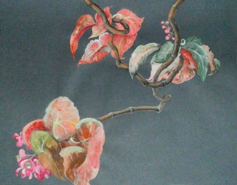 Begonia, artist Lela Tabliashvili, gouache, pastel, pencil, painting on fine art paper, $700