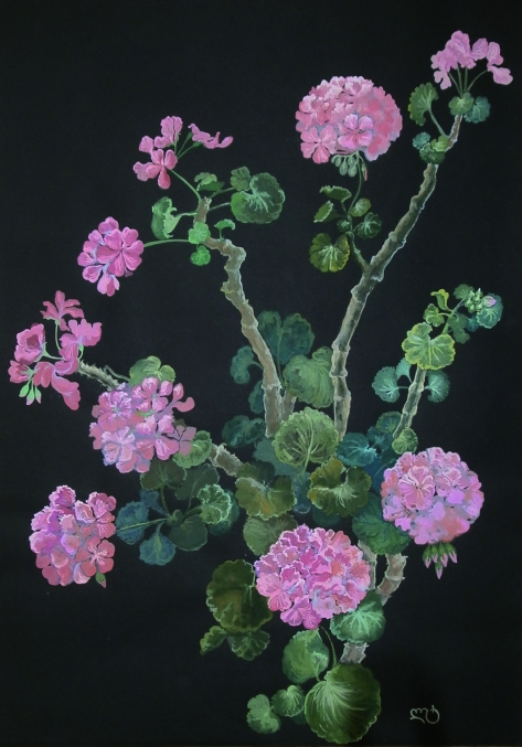 Rose Begonia, Lela Tabliashvili, gouache, pastel on paper. $700