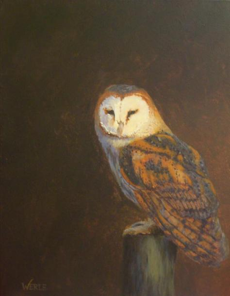 Figment of Your Imagination- Barn Owl, Bill Werle