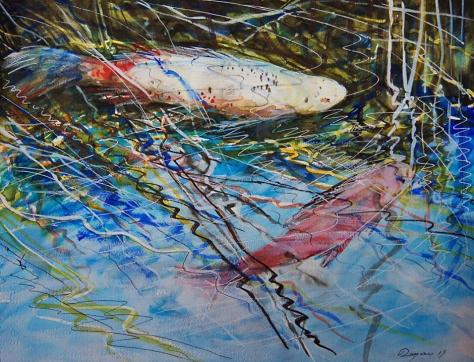 Bristol Blue Shubunkin and Golden Rudd Fish, Roman Rocco Burgan