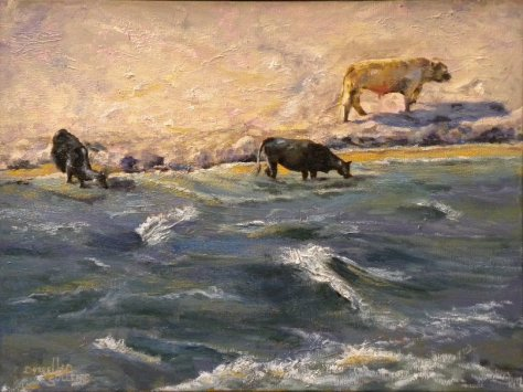 two cows, one bull by river, Darrell Sullens