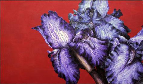 Irises, Michelle Staton