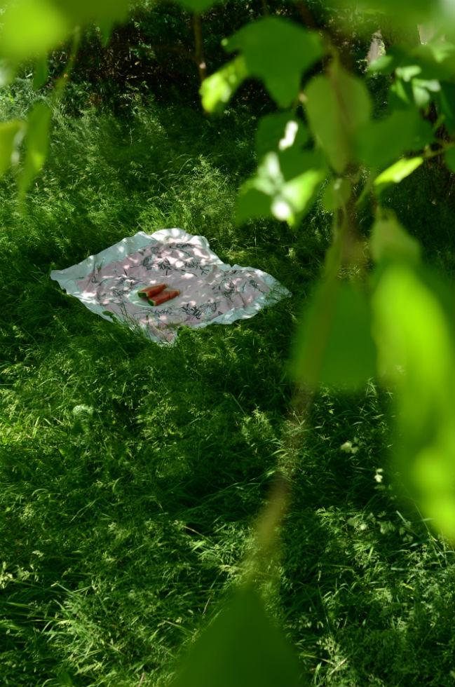 picnic under the shade tree, photo by Marie Kazalia