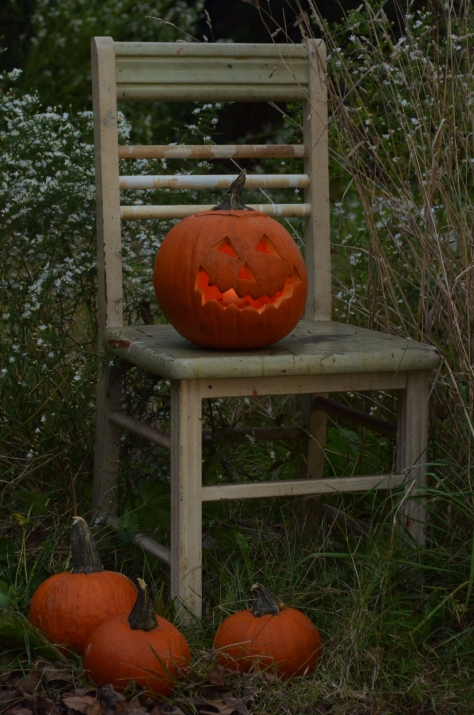 Blue Hour Jackolantern, Styling and Photograph by Marie Kazalia