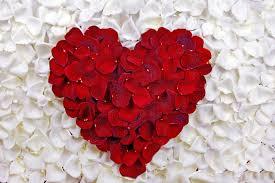 petalheart