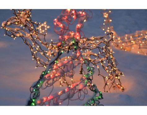 Christmas lights in snow at night--photograph by Marie Kazalia